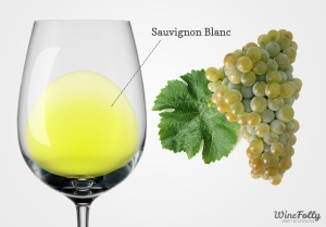 Sauvignon Blanc (c) Wine Folly.